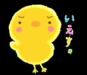 フワフワピヨコ