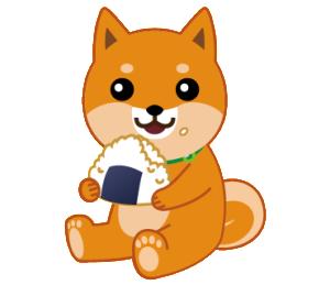 柴犬「ムサシ」7
