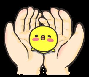 ひよこの「ぴよぴよ」3