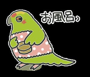 きみちゃんの日常