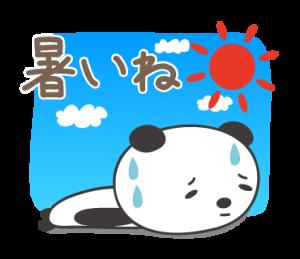 真夏のパンダちゃん Summer for panda