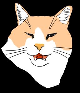 Cat!Cat! and…Cat! 2
