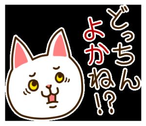 九州んにき