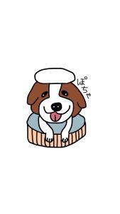 シーズー犬ぷくちゃんのワンダフルな日常