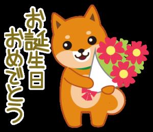 柴犬「ムサシ」誕生日&年中行事スタンプ