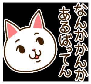 九州んにき3
