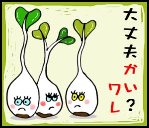 だじゃれな野菜達
