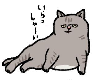 そう言っているようにみえるネコ