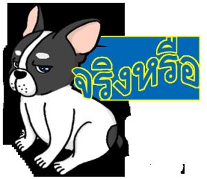 """ลูกสุนัข""""Mametaro"""" (ภาษาไทย)"""