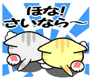 大阪の野良猫2♪