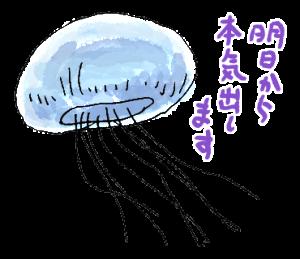 クラゲのきもち