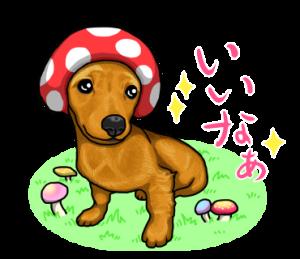 可愛い子犬のダックスたち