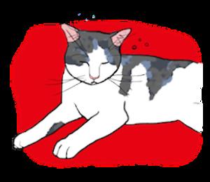 Cat!Cat!AND…Cat!