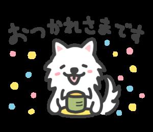 愛嬌のある日本スピッツ