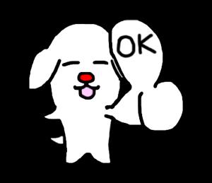 白い犬の毎日