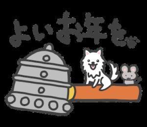 お正月の日本スピッツ【2020子年令和二年】
