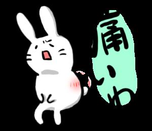 腰痛持ちのウサギ