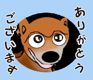 プリティな柴犬