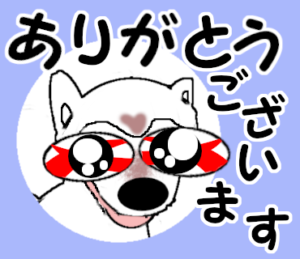 プリティな白い柴犬