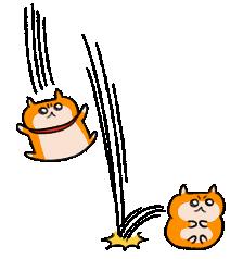 生きぬけ!爆走!クソハムちゃん2